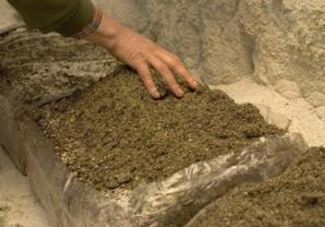 La terre de gobetage doit recouvrir le compost.